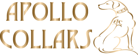 Apollo Collars | Beautiful Handmade Dog Collars and Dog Leads