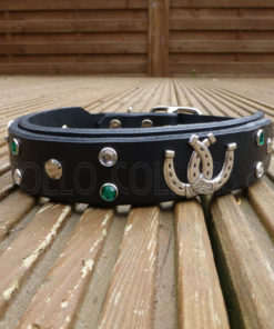 Apollo Collars Lucky Horseshoe Dog Collar