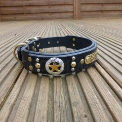 Apollo Collars The Ranger Dog Collar