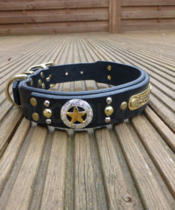 Apollo Collars The Ranger Dog Collar