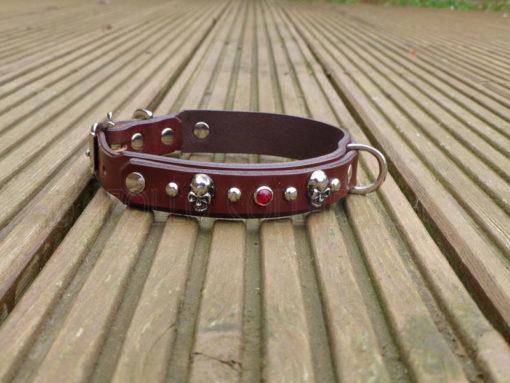 Apollo Collars Skull Rocks Dog Collars