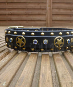 Apollo Collars Texas Jewel Dog Collar