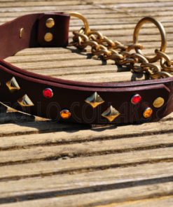 Apollo Collars The Monroe Dog Collar