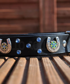 Apollo Collars The Rhinestone Horseshoe Dog Collar