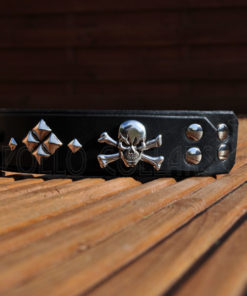 Apollo Collars The Skullar Dog Collar