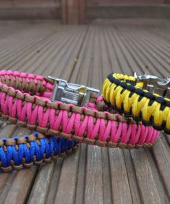 Apollo Collars King Cobra Buckle Paracord Dog Collars