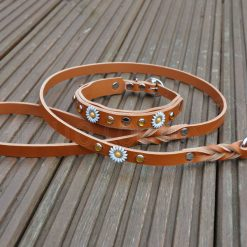 Apollo Collars Matching Leather Lead - Mini Daisy Dog Collar & Lead