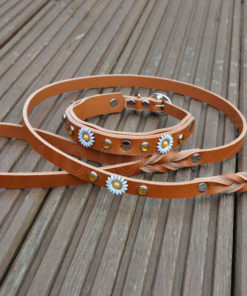 Apollo Collars Matching Leather Lead - Mini Daisy Dog Collar & Lead
