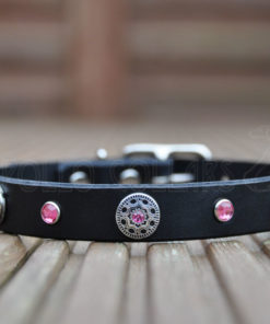 Apollo Collars Mini Freya Dog Collar