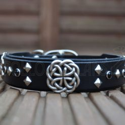 Apollo Collars The Celtic Dream Dog Collars