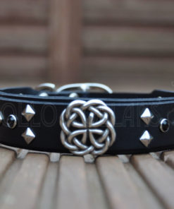 Apollo Collars The Celtic Dream Dog Collars