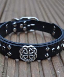 Apollo Collars The Celtic Dream Dog Collar