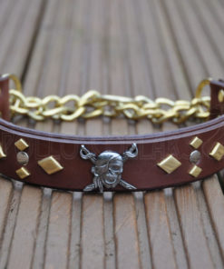 Apollo Collars The Pirate Dog Collar