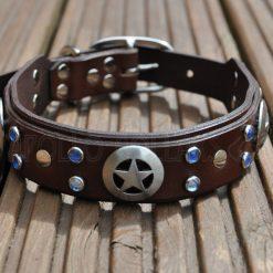 Apollo Collars The Sherif Dog Collar