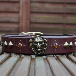 Apollo Collars Spirit of the Lion Dog Collar