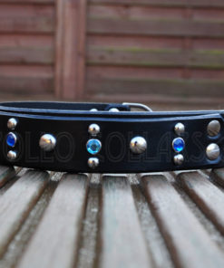 Apollo Collars Studded Sky Dog Collar
