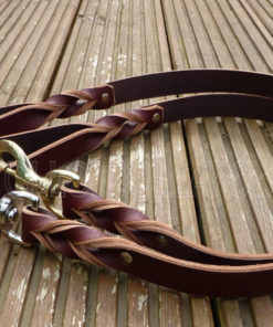 Apollo Collars Leather Lead
