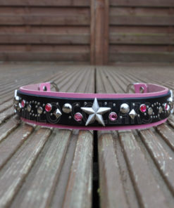 Apollo Collars Stardust Dog Collar