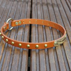 ID House Collar (Tan leather with gold spots)