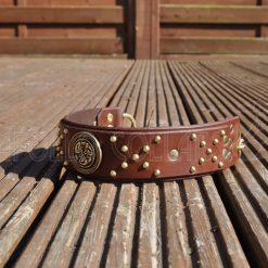 Hercules Leather Collar
