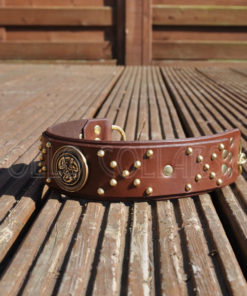 Hercules Leather Collar